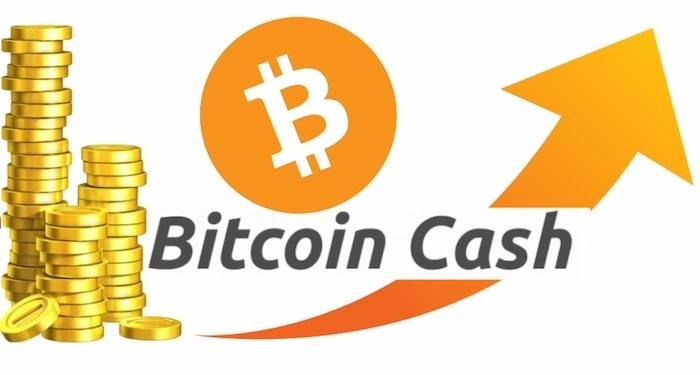 Bitcoin Cash Prognose
