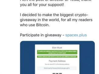 Elon Musk Fake Account