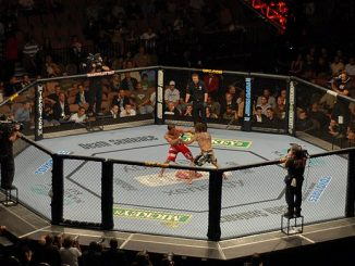 Litecoin sponsort UFC-Kampf