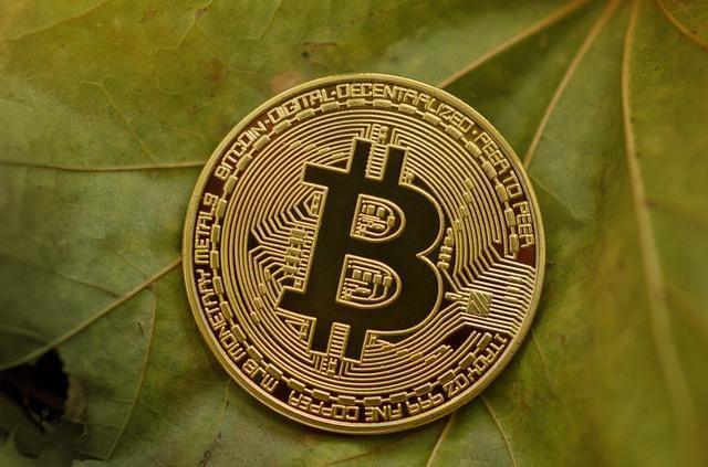 nature money photo