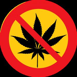 Cannabis Aktien Verbot