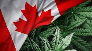 Cannabis in Kanada