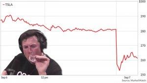 Tesla Wertverlust