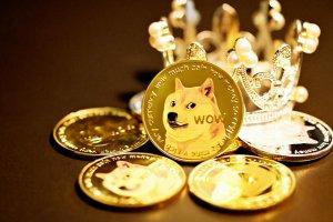 Shiba Inu Coin +36%! Neue Mega-Rallye, neues Allzeithoch – warum SHIB jetzt sogar DOGE überholen kann